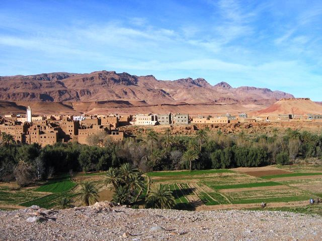 Erfoud Tafilalt Oasis in Morocco