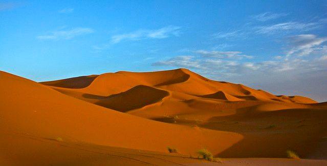 Sand Dune in Sahara