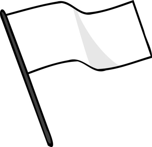 Plane white flag