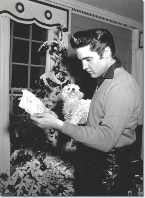 Elvis Presley with a Poodle
