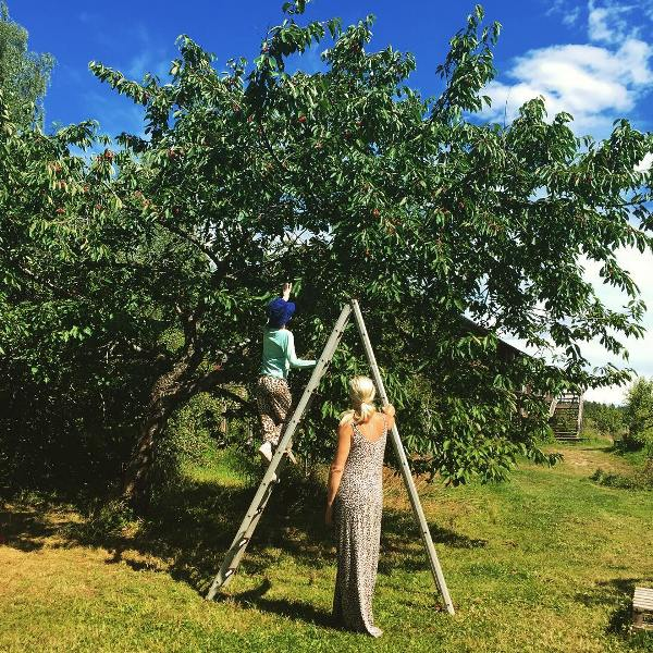 Greta Thunberg's Farmland