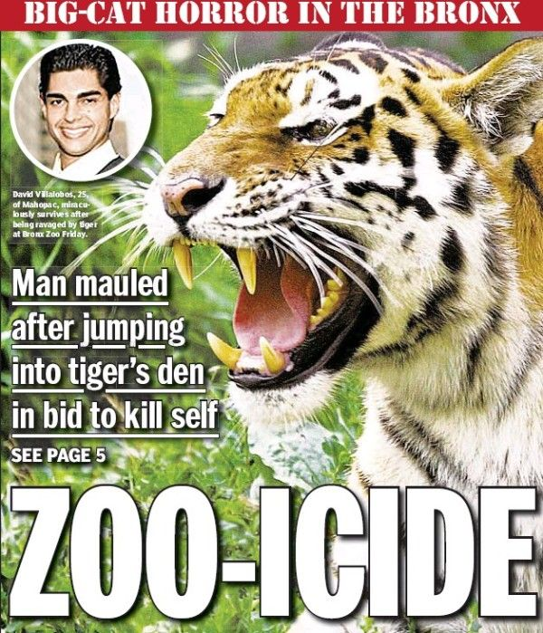 David Villalobos Mauled by a Tiger in Bronx Zoo