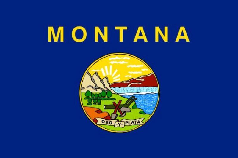 Montana's State Flag And Motto